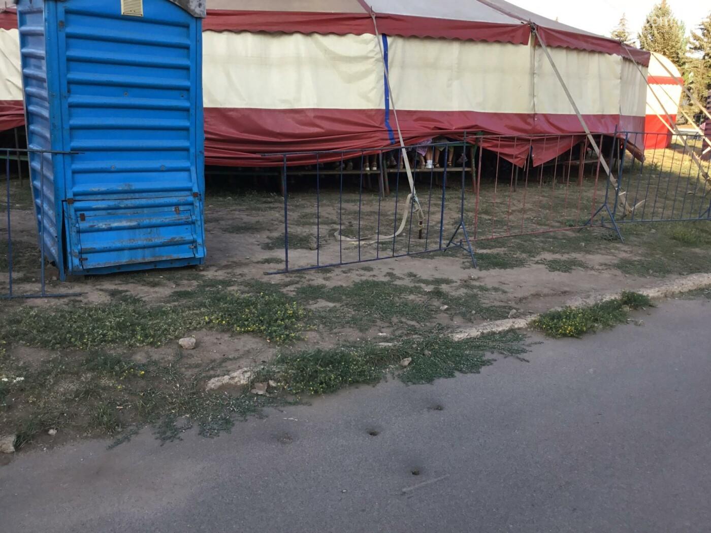 Дружковка: Цирковое представление в этот раз обошлось без ущерба для асфальта, фото-1