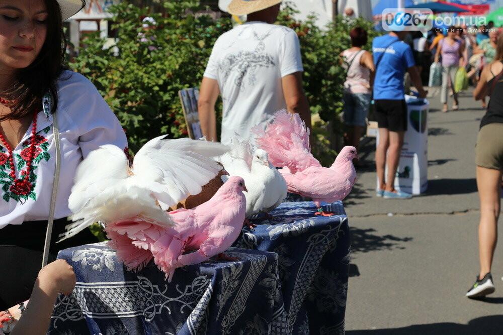 На Полтавщині пройшов традиційний Сорочинський ярмарок (фото з місця події) , фото-3