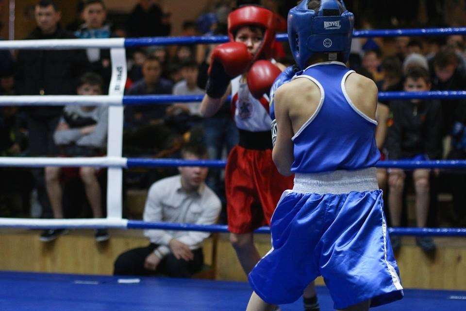 Трое воспитанников секции бокса из Дружковки стали призерами крупного турнира, фото-2
