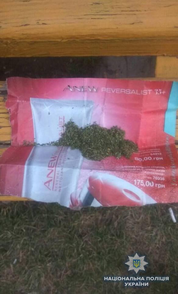 «Травка» зеленеет: На выходных в Дружковке у 18-летнего юноши обнаружили пакет с сушеной коноплей, фото-1
