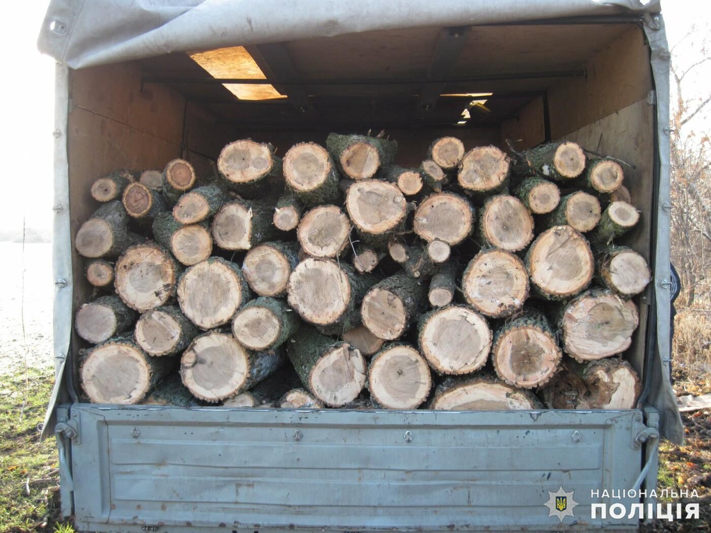 Дружковка: Незаконную вырубку леса пресекли полицейские в поселке Райское (ФОТО), фото-1