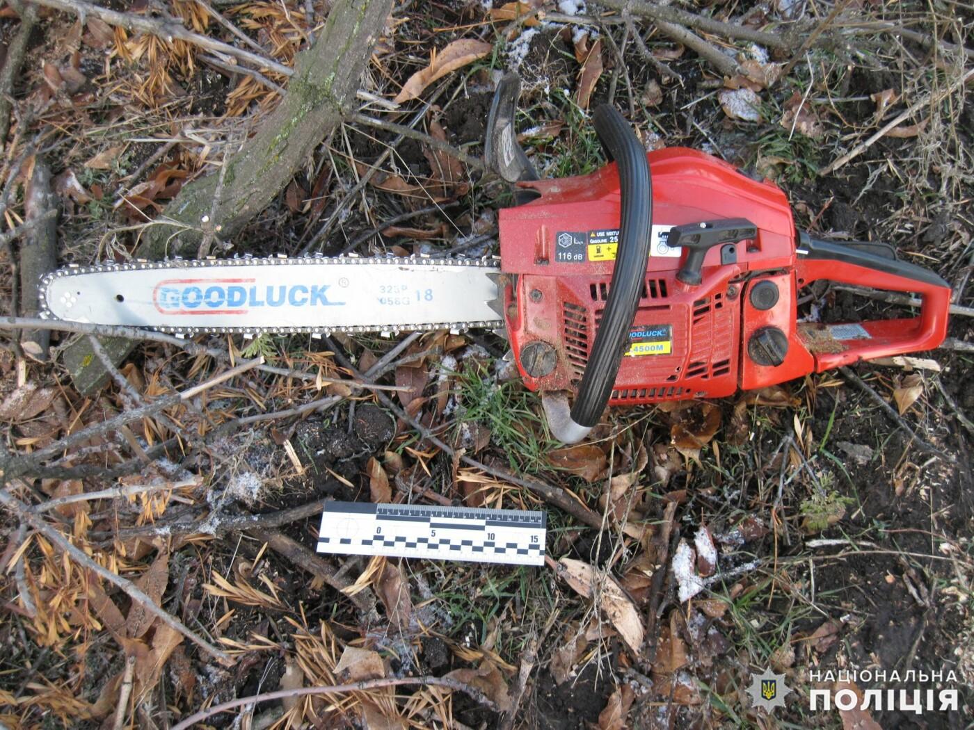 Дружковка: Незаконную вырубку леса пресекли полицейские в поселке Райское (ФОТО), фото-2