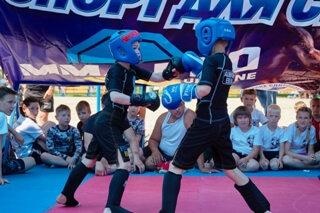 Команда из Дружковки стала бронзовым призером областного турнира по смешанным единоборствам (ММА), фото-1