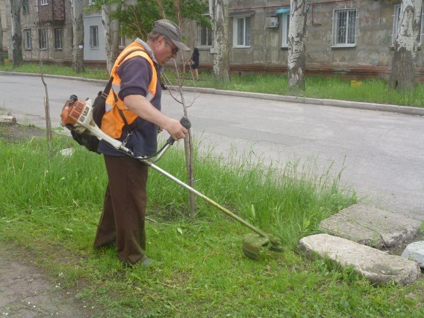 В Дружковке амброзия и высокая трава идут «под нож», фото-1