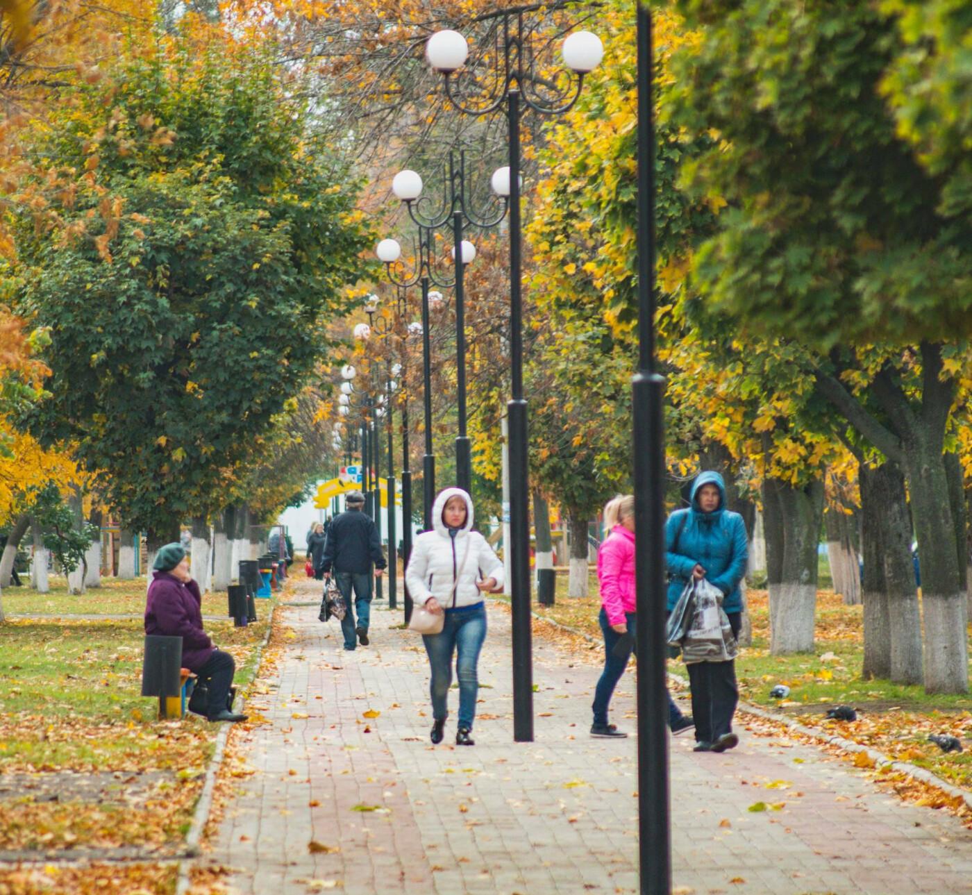 Золотые краски осени: Любимые фотозоны в Дружковке (ФОТО), фото-2