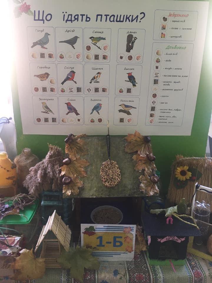 Птичек жалко: Дружковские школьники соорудили «зимние столовые» для пернатых (ФОТО), фото-6