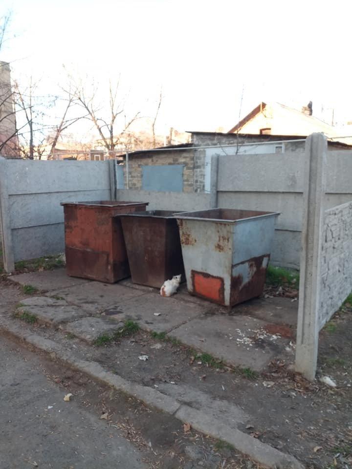 Маршрут «кораблика»: В Дружковке произошла серия краж панелей ограждения в местах сбора мусора (ФОТО), фото-1