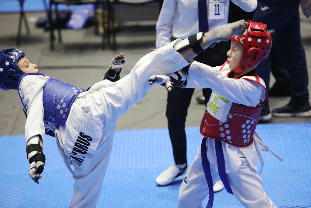 Дружковские мастера тхэквондо на мажорной ноте завершили спортивный сезон, фото-1