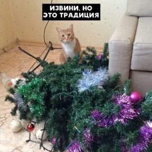 Тваринки і ялинки. Смішні новорічні картинки з котиками та собачками, фото-5