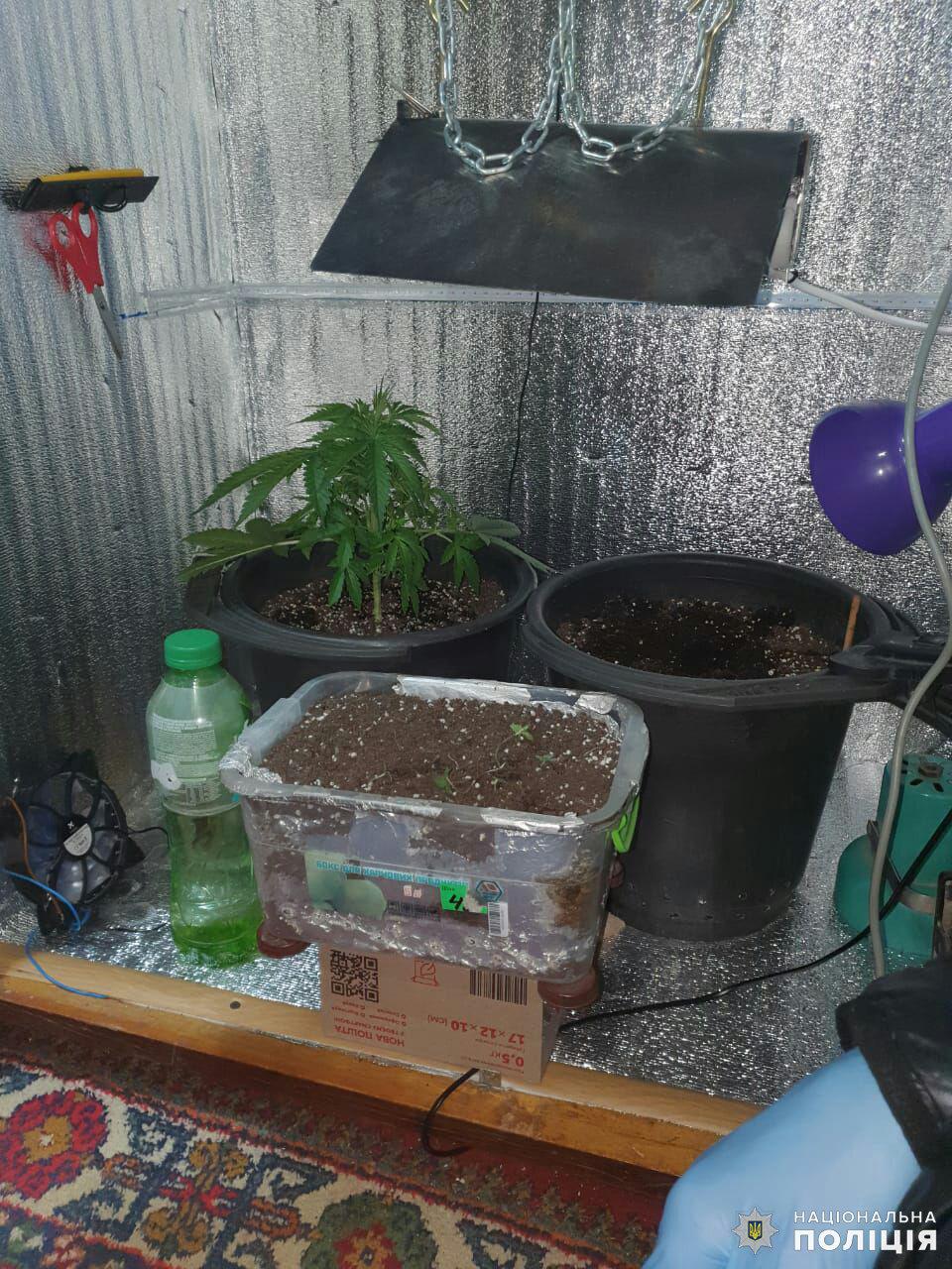 У Дружківці виявили міні-лабораторію з виготовлення наркотиків. Збутчика зілля затримано, фото-1