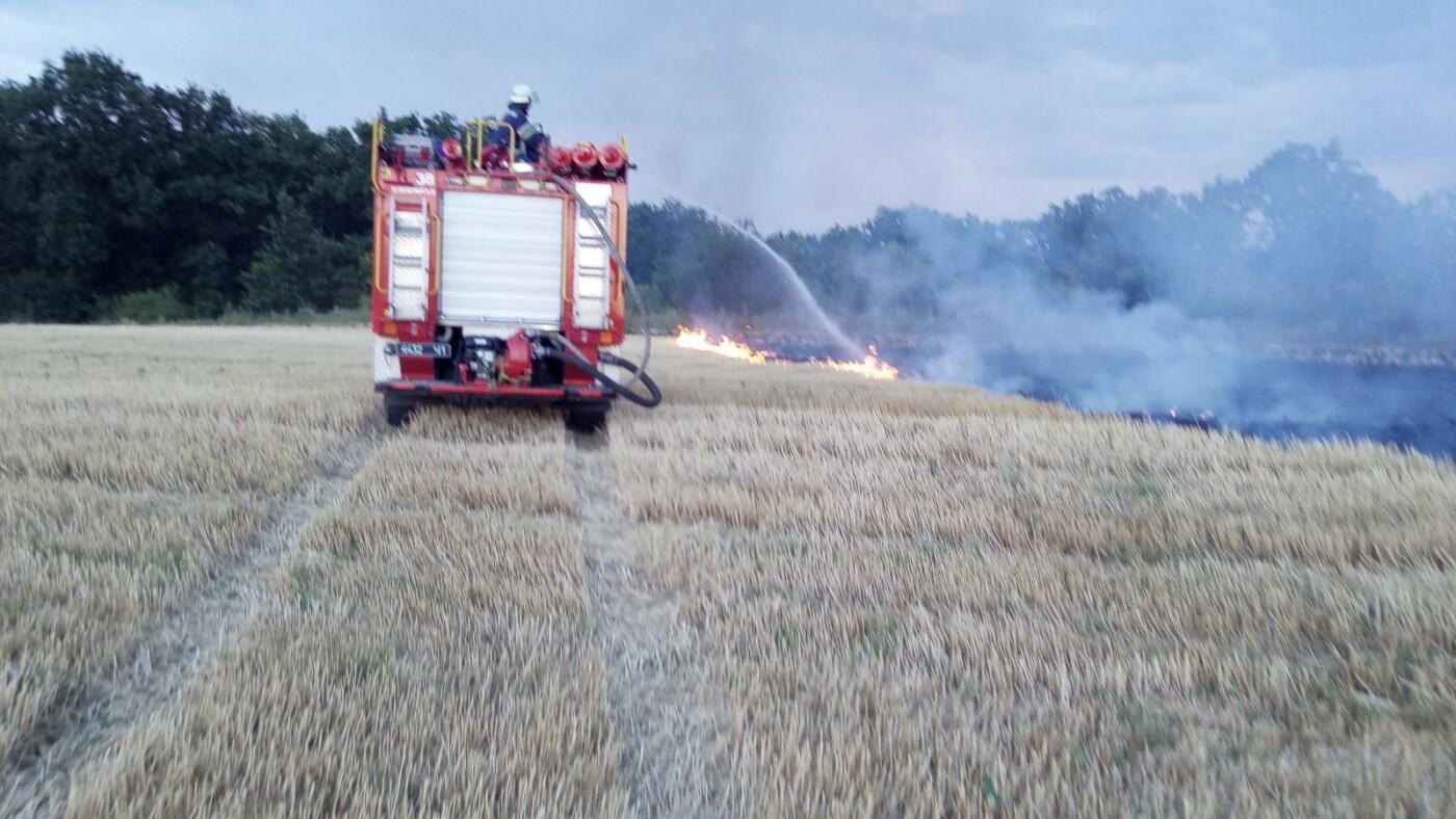 В Дружківці пожежники ліквідували загоряння стерні , фото-2