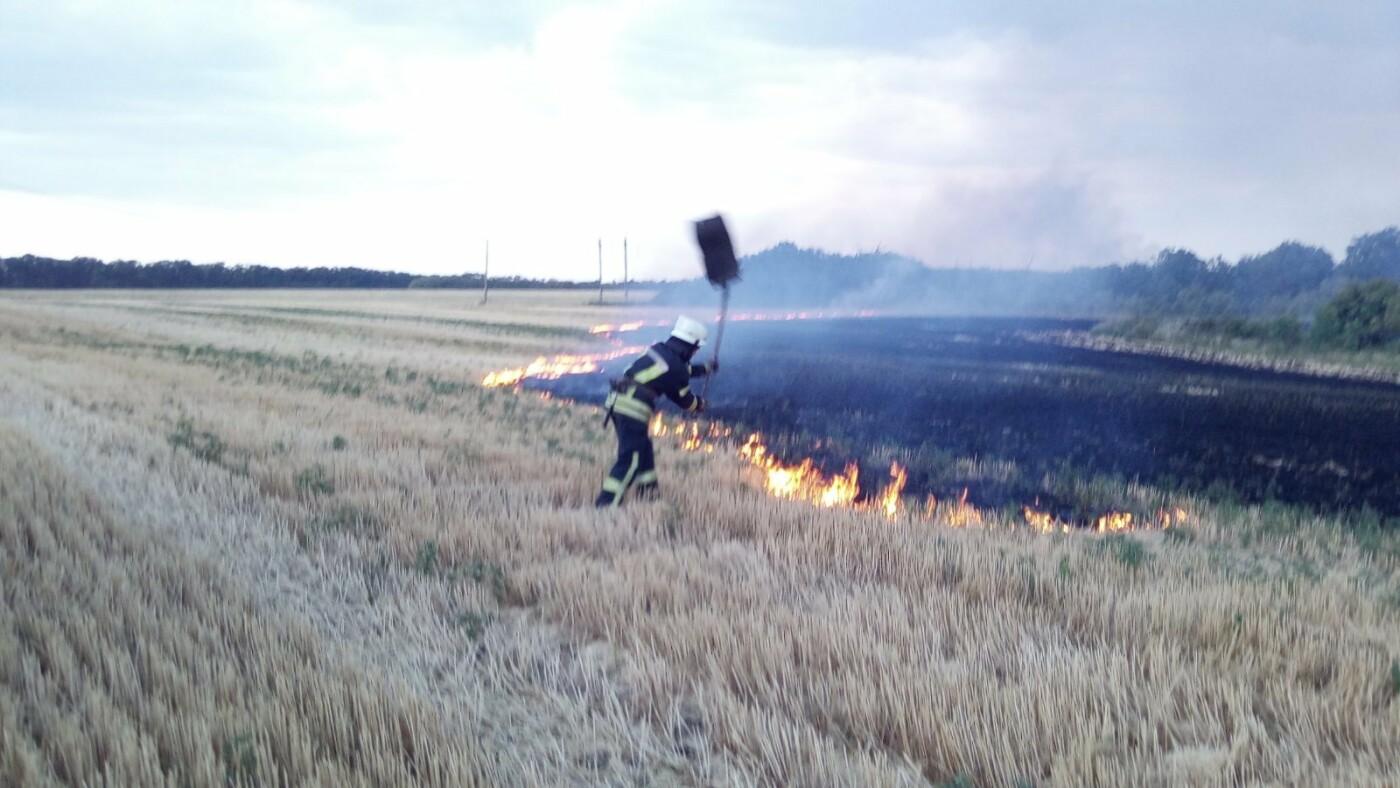 В Дружківці пожежники ліквідували загоряння стерні , фото-1
