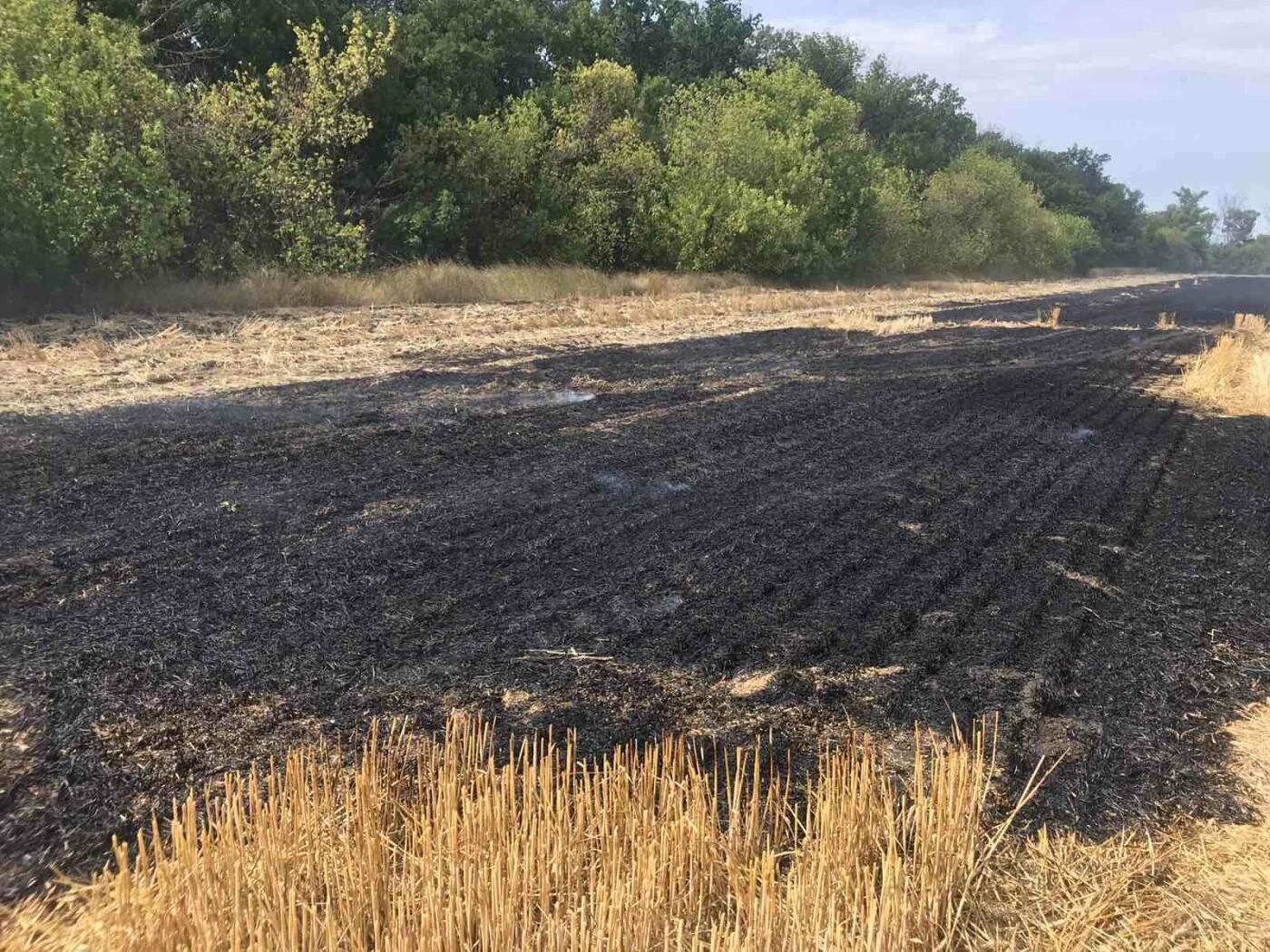 В Дружківці пожежники ліквідували загоряння стерні , фото-4