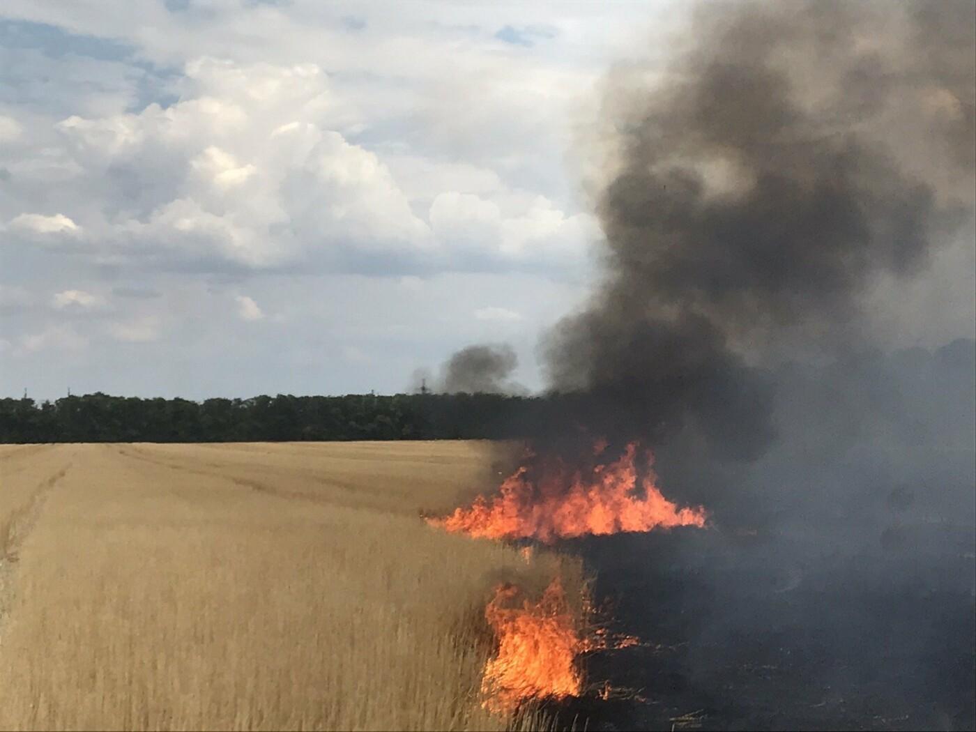 В Дружківці пожежники ліквідували загоряння стерні , фото-3