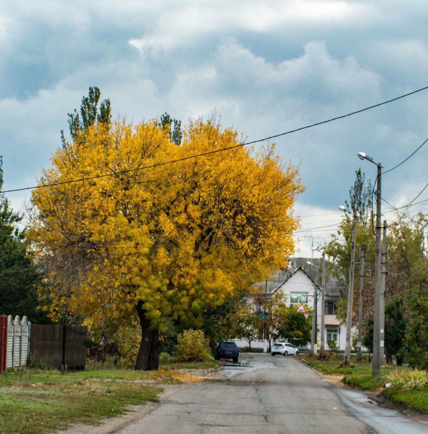 Де восени полюбляють робити фотосесії мешканці Дружківки , фото-5