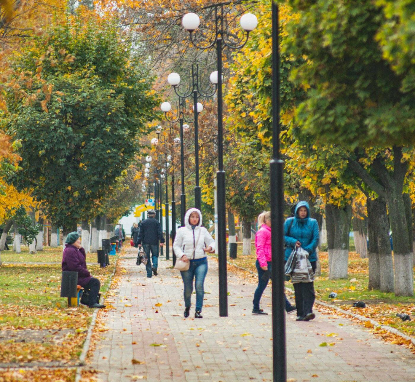 Де восени полюбляють робити фотосесії мешканці Дружківки , фото-4