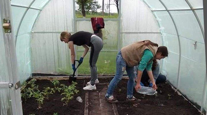 У Донецькій області школярі отримали грант на облаштування теплиці, фото-1
