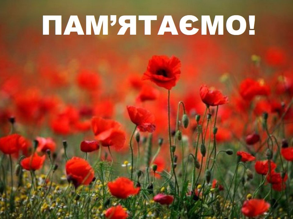 Дружківка вшановує пам'ять жертв війни, фото-1